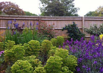 Garden border image 3