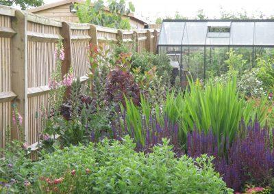 Garden border image 4
